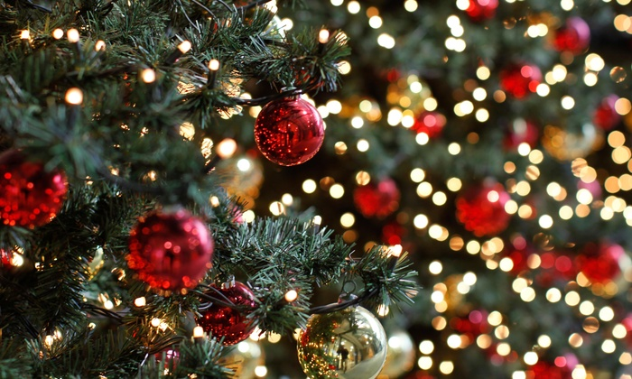 Hang Em High Christmas Lights - Seattle: $200 for $400 Worth of Holiday Decor — Hang Em High Christmas Lights