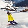 Skipässe für die Ski-Arena