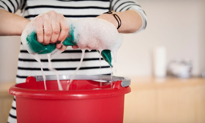 The Joy of Cleaning - Tucson: Two, Three, or Six Hours of Housecleaning with Two Cleaners from The Joy of Cleaning (Up to 62% Off)