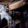 Up to 40% Off at Mt. Washington Manor Haunted House