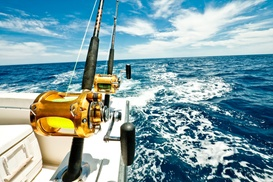 Captain Andrew's fishing charters: Up to 67% Off Shark Fishing at Captain Andrew's fishing charters