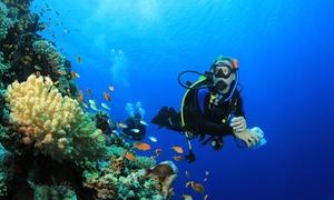 6 CONTINENTE: 2 immersioni subacquee da un'ora per una, 2 o 3 persone con 6° Continente Diving Center (sconto fino a 72%)