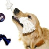 Dukes Dog Rope Toys with Tennis Ball (3-Pack)