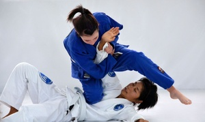 Gracie Tampa West: Four Weeks of Unlimited Brazilian Jiu-Jitsu Classes at gracie palm harbor (90% Off)