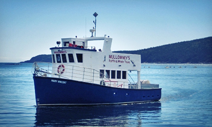 Mullowney's Boat Tours - Bay Bulls: Puffin- and Whale-Watching Tour for Two or Four from Mullowney's Boat Tours (Up to Half Off)
