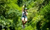 Up to 48% Off at Anchor's Above Zipline Adventures