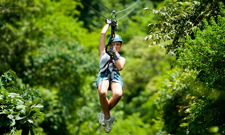 Zipline Adventure Package for Two or Four from Lark Valley Zip Lines (Up to 55% Off)