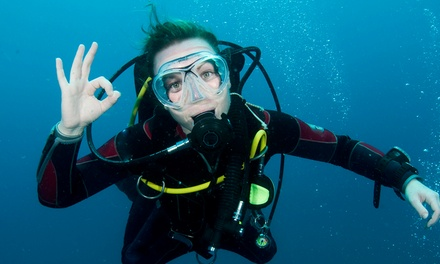 Refresher Course or Open-Water Scuba-Certification Class for One or Two at Deep Blue Scuba (Up to 63% Off)