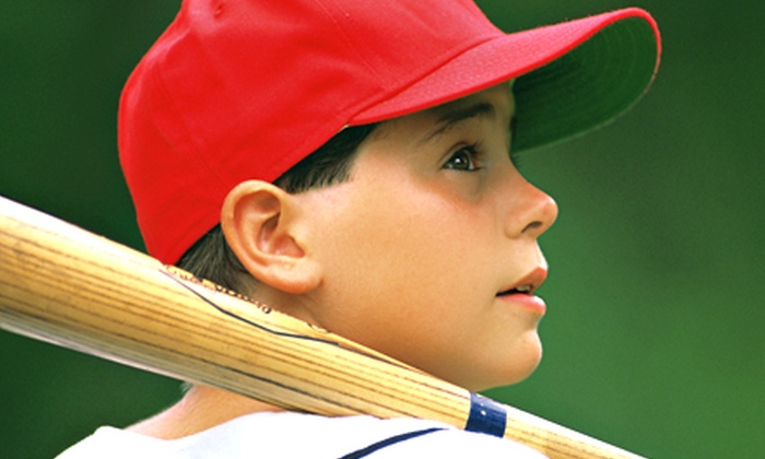 Great Lakes Baseball Academy - Canton: $20 for One Hour in Batting Cage or a 30-Minute Baseball or Softball Lesson at Great Lakes Baseball Academy ($40 Value)