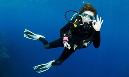 Cardiff Octopus Diving Club