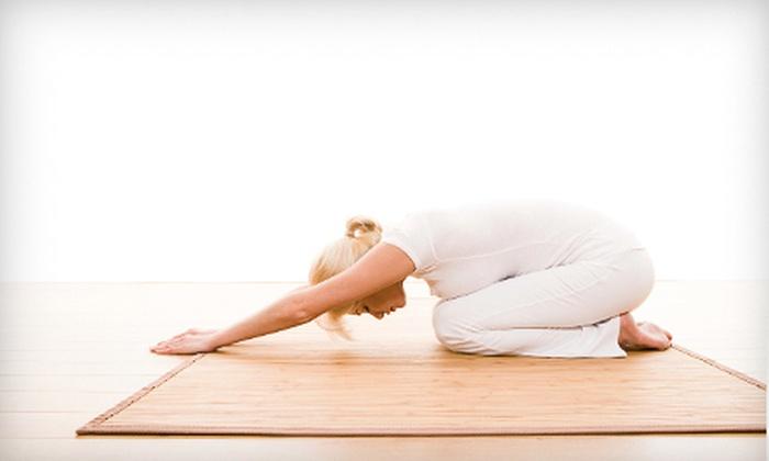 The American Yoga Academy & Studio - West Orange: 5 or 10 Classes at The American Yoga Academy & Studio in West Orange (Up to 62% Off)