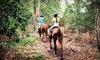 Pfeiffer Riding Stables - 2: $60 for a 90-Minute Horseback Trail Ride for Two from Pfeiffer Riding Stables ($120 Value)