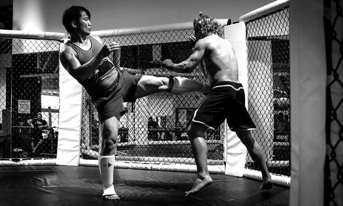 Me Time Llc - North & East: $105 for $300 Worth of Martial-Arts Lessons — Anouphab MMTL