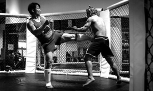 Me Time Llc: $105 for $300 Worth of Martial-Arts Lessons — Anouphab MMTL