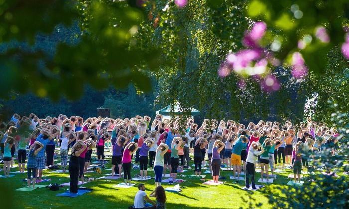 YogiNation Denver - Creekside Park: Up to 52% Off Yoga & Music Fest at YogiNation Denver
