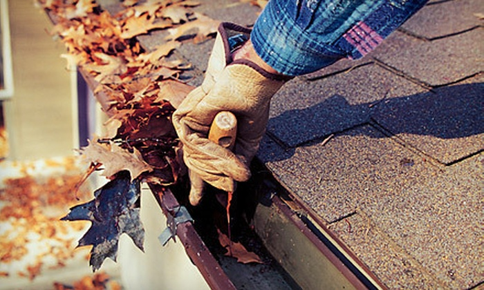 MGS Window Cleaning - MGS Cleaning Solutions: Eavestrough Cleaning with Roof Inspection from MGS Window Cleaning (Up to 72% Off) Three Options Available.