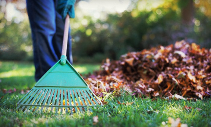 Make It Greener Full Service Lawn Care & Landscaping - Sweetbriar: Leaf Removal for Up to a Quarter or Half Acre from Make It Greener Full Service Lawn Care & Landscaping (51% Off)