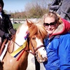 Up to 72% Off Horseback Riding Lessons