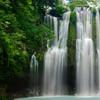 Up to 42% Off Jungle Waterfalls Tour at Real Hawaii Tour