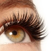 Up to 42% Off Silk or Mink Eyelash Extensions