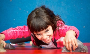 Super Soccer East Kilbride: Climbing Party for Ten Kids or Climbing Package for Ten Adults at Super Soccer East Kilbride (Up to 41% Off)