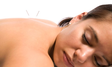 An Acupuncture Treatment and an Initial Consultation at Allyson C. Lange (70% Off)