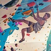 Up to 51% Off Yoga and Rock Wall Climbing