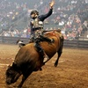 Championship Bull Riding — Up to 49% Off Rodeo