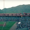 El Paso Diablos — Half Off Baseball Game