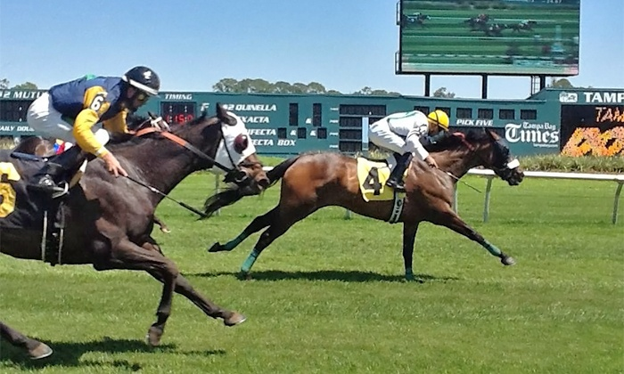 Tampa Bay Downs - Twin Branch Acres: Horserace Outing or One, Two, Four, or Six with Betting and Food Vouchers at Tampa Bay Downs (Up to 56% Off)