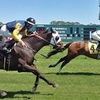 56% Off Horserace Outing at Tampa Bay Downs