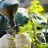 Up to Half Off Paintball Package in Lakeland