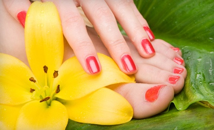 Manicure Package (up to a $40 value) - Studio 401 in East Greenwich