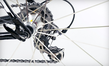 Basic Bike Tune-Up (a $39 value) - Greenway Bicycles in Ocala