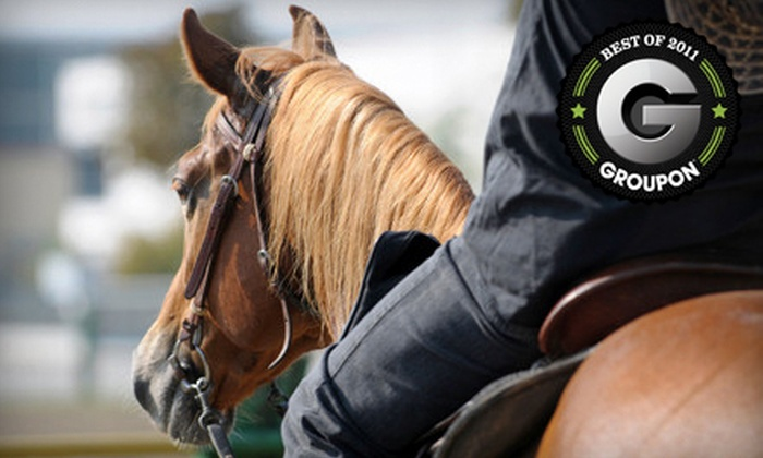 Serenity Stables & Events Facility - Caldwell: $39 for Two Basic Western-Style Horse-Riding Lessons at Serenity Stables & Events Facility ($80 Value)