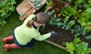 Three Bees Nursery - Central Richmond: $15 for $30 Worth of Plants and Gardening Supplies at Three Bees Nursery