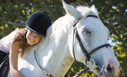 1-Hour Private Riding Lesson (a $55 value) - Fieldgate Stables Ltd. in Hornby