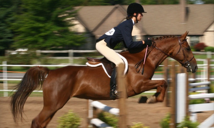 Spruce Meadow Farm - Clarence: One-Hour Private Horseback-Riding-and-Grooming Lesson for One or Two at Spruce Meadow Farm in Clarence (Up to 71% Off)