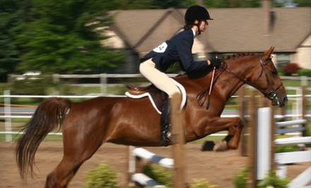 1-Hour Private Horseback-Riding-and-Grooming Lesson for 1 (a $70 value) - Spruce Meadow Farm in Clarence