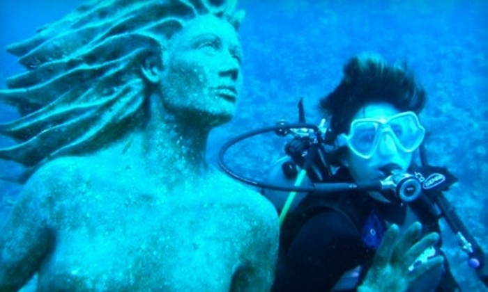Dolphin Dive Center - Athens-Clarke County unified government (balance): $15 for Discover Scuba Lesson from Dolphin Dive Center