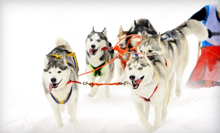 Simply Perfect Dog-Sledding Adventure for Two, Valid Sun.-Thurs. at 9AM, 12PM and 3PM (up to a $150 value) - MUSHERS Dog-Sled Tours in Warren