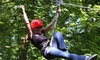 Mammoth Cave Adventures - Horse Cave: $36 for Forest-Canopy Zip-Line Tour and Photo from Mammoth Cave Adventures in Cave City ($88.30 Value)