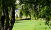 Twin Lakes Golf Course - Kaleden: Golf for Two or Four with Cart and Range Balls at Twin Lakes Golf Course (Up to 45% Off)
