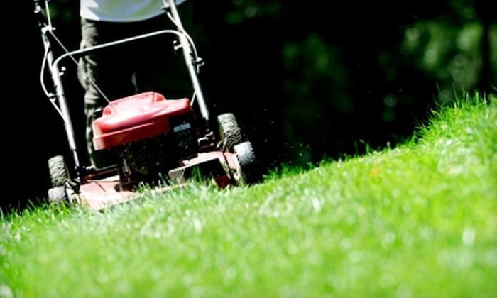 Southern Coast Landscaping - Mobile / Baldwin County: $20 for a Basic Lawn-Care Treatment ($45 Value) from Southern Coast Landscaping