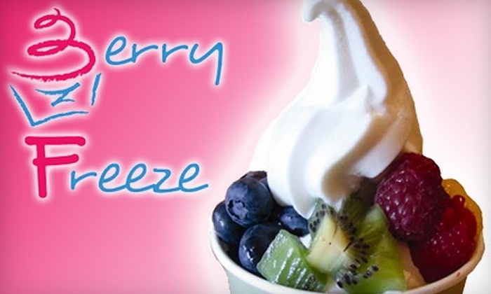 Berry Freeze - Coolidge Corner: $5 for $10 Worth of Frozen Yogurt, Smoothies, and Teas at Berry Freeze in Coolidge Corner