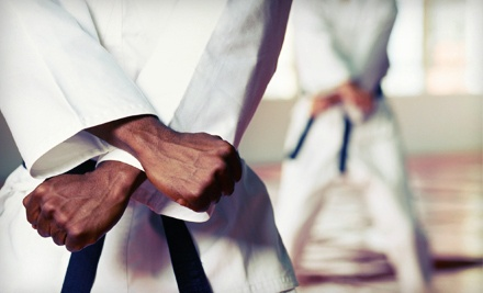 Family Class Package (a $190 value) - Victory Martial Arts in Okemos