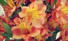 Alaska Wholesale Flower Market - Anchorage: Hand-Tied Bouquet Class or Floral Party for Up to 10 at Alaska Wholesale Flower Market (Up to 60% Off)