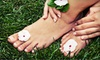 BienEstar Massage - Sunland Park North: One or Three Shellac Manicures with Basic Pedicures at BienEstar Massage (Up to 56% Off)