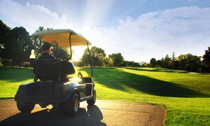 18-hole Round Of Golf For Two With A Cart At Tower Ridge Country Club (up To 47% Off). Two Options Available.