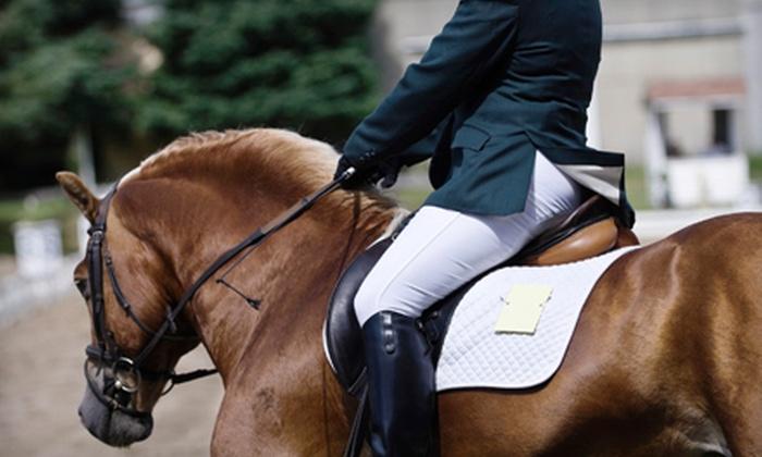 Washington International Horse Show - Downtown - Penn Quarter - Chinatown: One Ticket to Washington International Horse Show on October 25–30 (Up to 53% Off). Three Options Available.